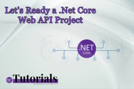 .Net Core Web API Project